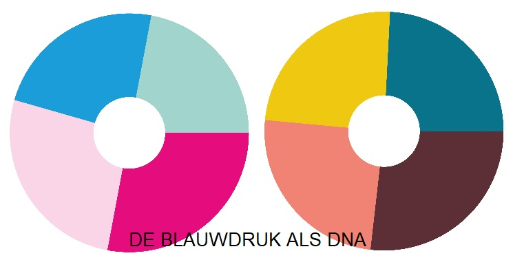 Blauwdruk als DNA