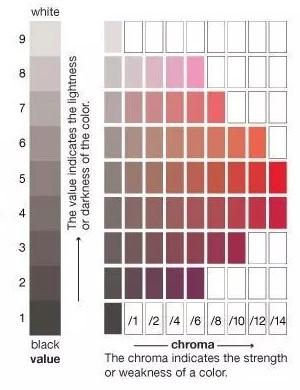 Studiedag over kleur