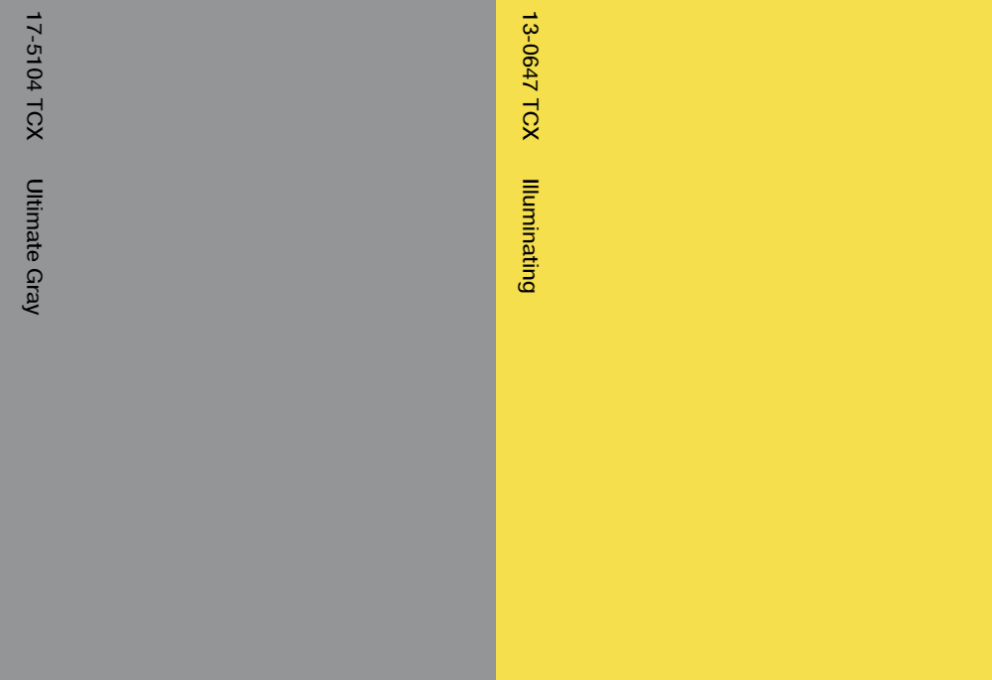 Pantone Trendkleur(en) 2021
